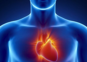 African-Americans Face Twice the Rate of Sudden Cardiac Arrest, Compared to Caucasians