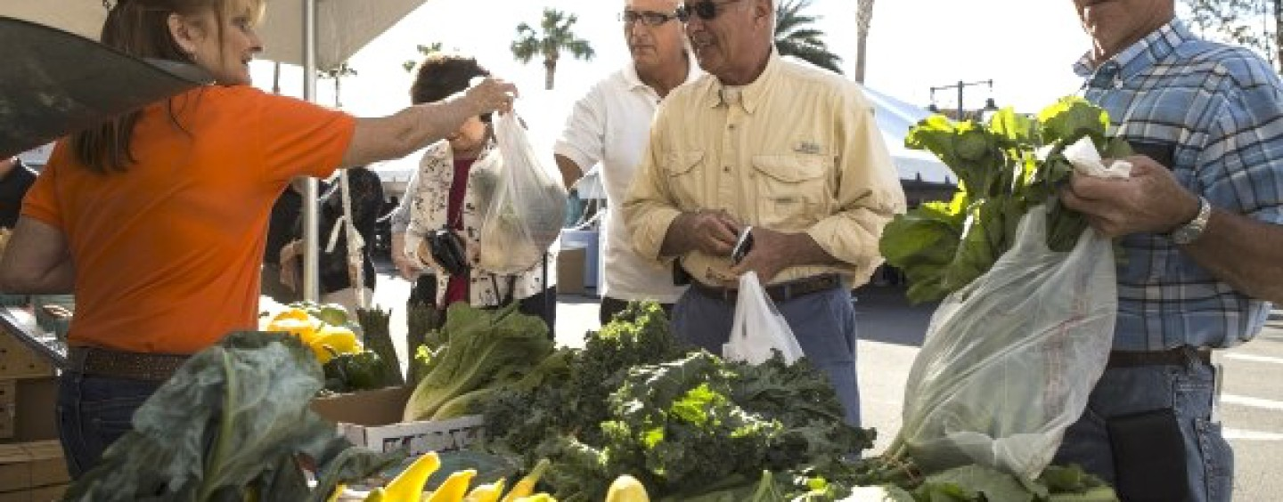 UF/IFAS Holding Workshop for Farmers' Market Managers and Vendors