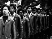 What I Learned From the Rise and Fall of the Black Panther Party