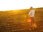 Why Owning Your Own Farm Isn't Necessarily a Ticket for Financial Well-Being
