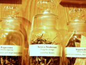 Herbal Medicines: Toxic Side Effects and Drug Interactions