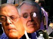 The Kochs' Political Empire Is Sweating Bullets That GOP Failure to Fix the Economy Could Cause a Progressive Uprising