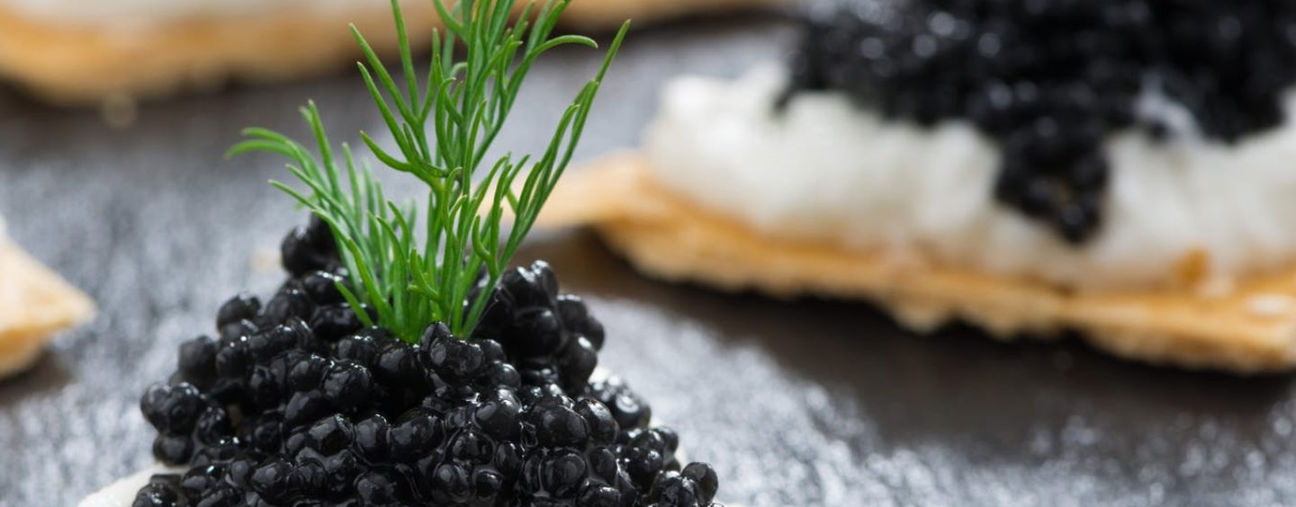 Let Them Eat Caviar: When Charity Galas Waste Money
