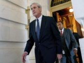 The Special Prosecutor in American Politics: Counsel Mueller's Speed and Tactics