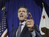 California's Jungle Primary Sets up Polarized Governor's Race for November