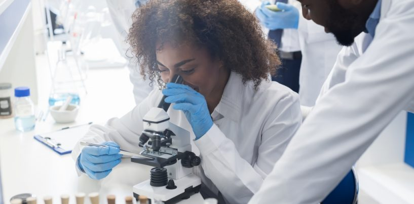 American Cancer Society and Four HBCUs Announce Diversity in Cancer Research Program to Improve Diversity, Equity, and Inclusion