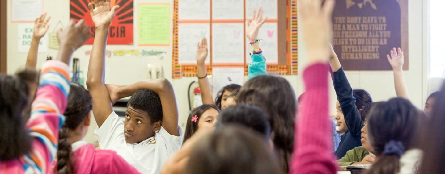 A Look Back at This Year's Educator Grants