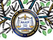 REGISTER TODAY: North Carolina NAACPVoting Rights Webinar – October 18th