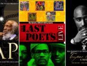 Morehouse Grad's DVDs Tell Black Stories