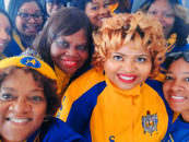 African American Sorority Supports Members, Public With 6-Part Webinar Series