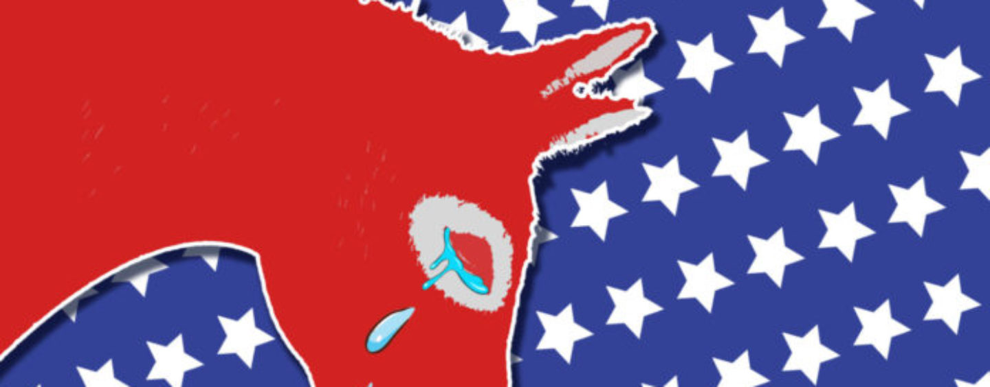 AUTOPSY: The Democratic Party in Crisis – Leadership Still Chasing Republican Voters
