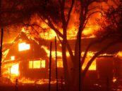 'Forces We've Unleashed Are Beyond Terrifying': Footage Shows Horrors of California Wildfires