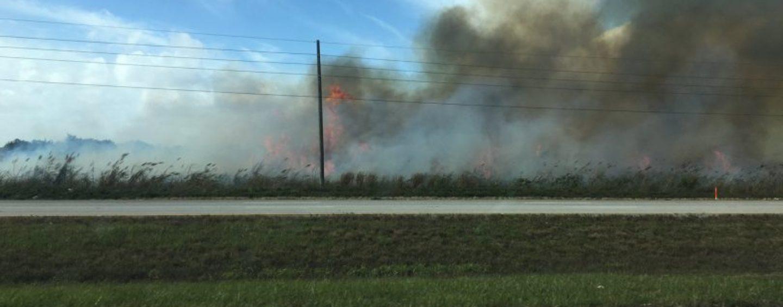 'Black Snow' from Sugarcane Harmful to Black, Poor Communities in Florida?