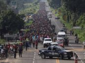 Is the Migrant Caravan Real or A Fabricated Masquerade?