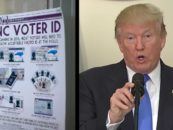 Push For Federal Voter ID, Claiming You Need Identification Just to Buy Stuff at Stores