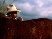 For Black Cowboys – From Inner-City Philly to Small-Town Texas – Horses and Riding Are a Way of Life