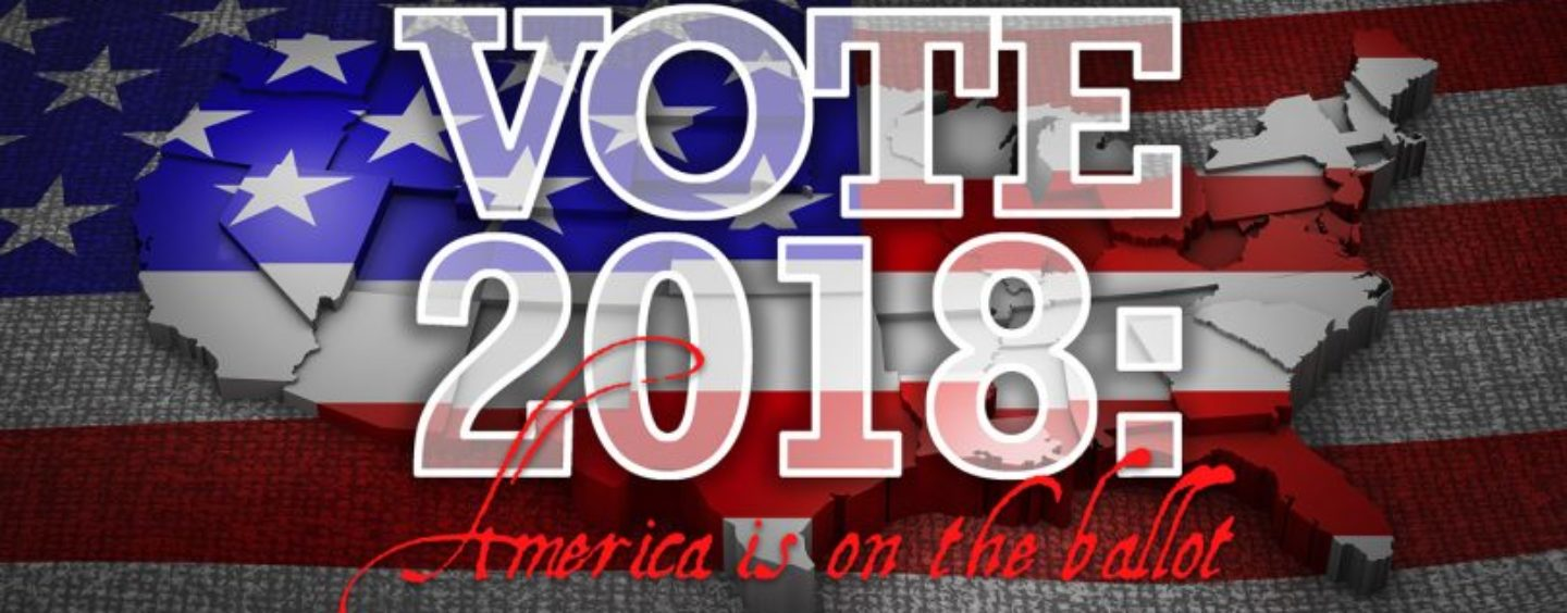 Vote 2018 – America Is on the Ballot – Too Much at Stake to Simply Ignore
